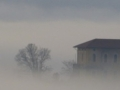 Nebbia sul Canavese