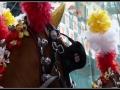 I cavalli entrano in piazza