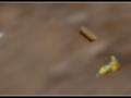 Caramelle volanti