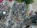 Nel groviglio di bici (Amsterdam)