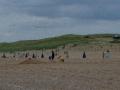 La spiaggia di Zuid Kennemerland